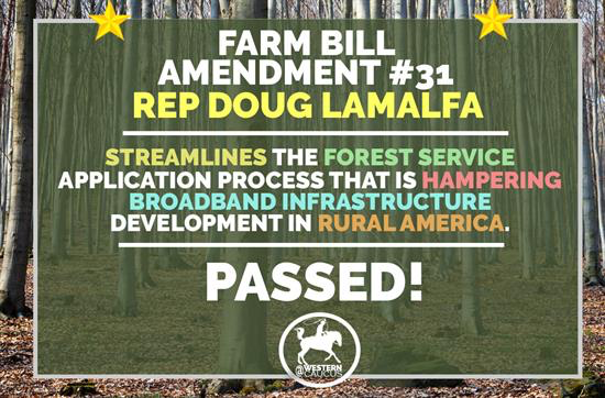 Ammendment #31 of Farm Bill